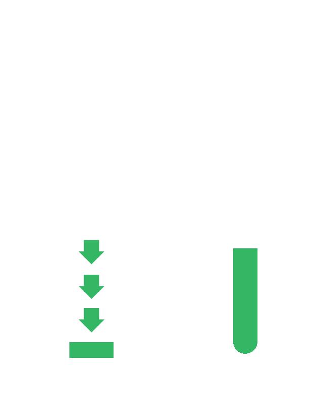 sap-fases-mob-2