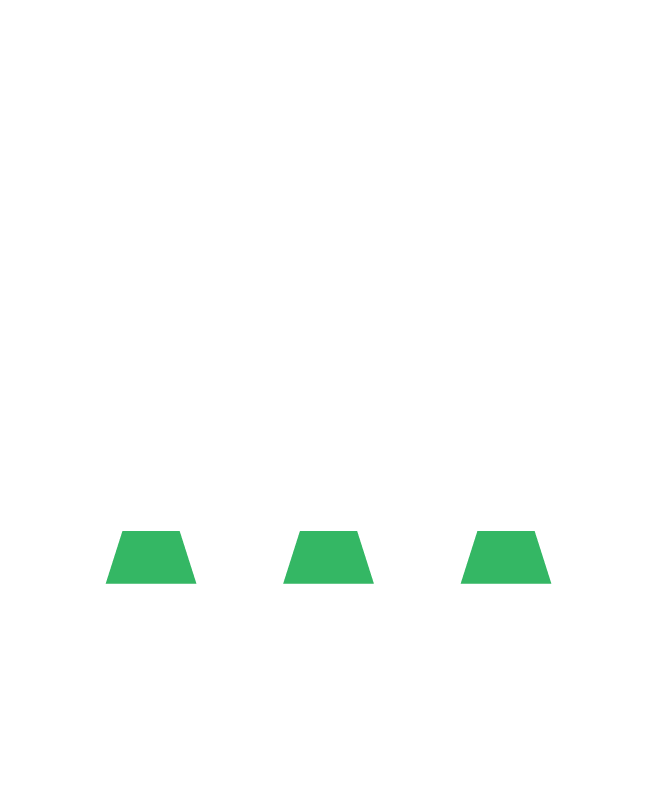 sap-fases-mob-5